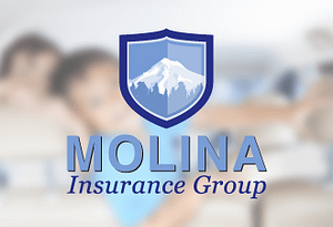 molina insurance group