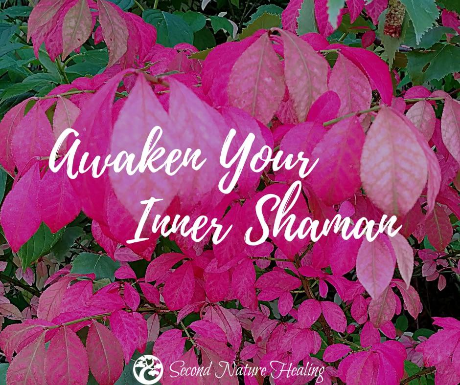 second nature healing inner shaman